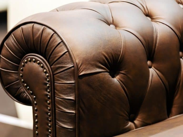 How to Check for Bed Bugs in Furniture: Step by Step Instructions
