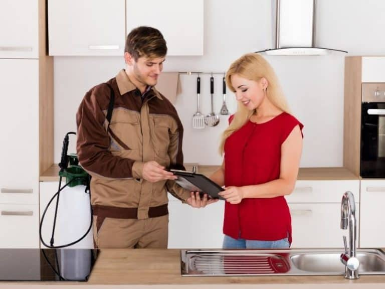 How to Choose Pest Control Services In 2021: Ultimate Guide