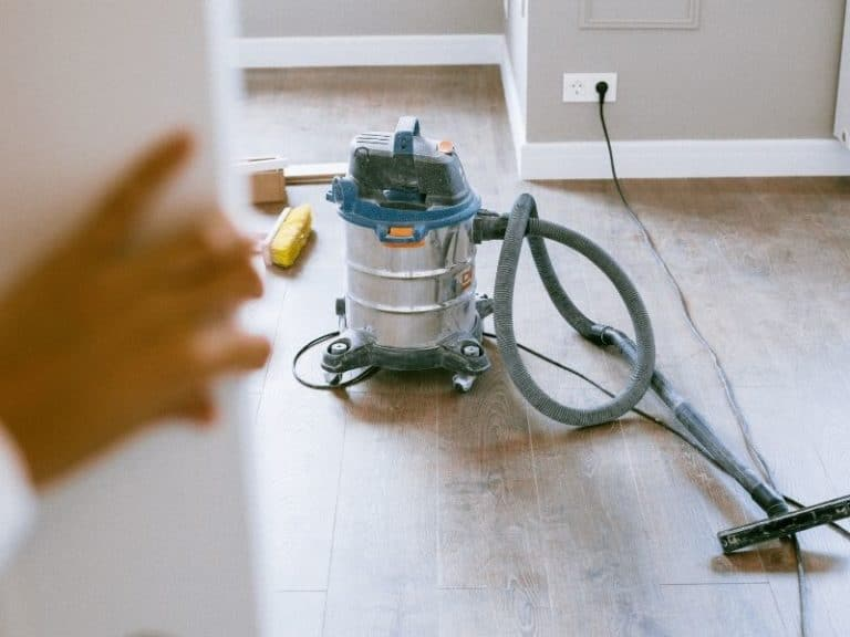How To De-Flea Your Apartment With 10 Tools