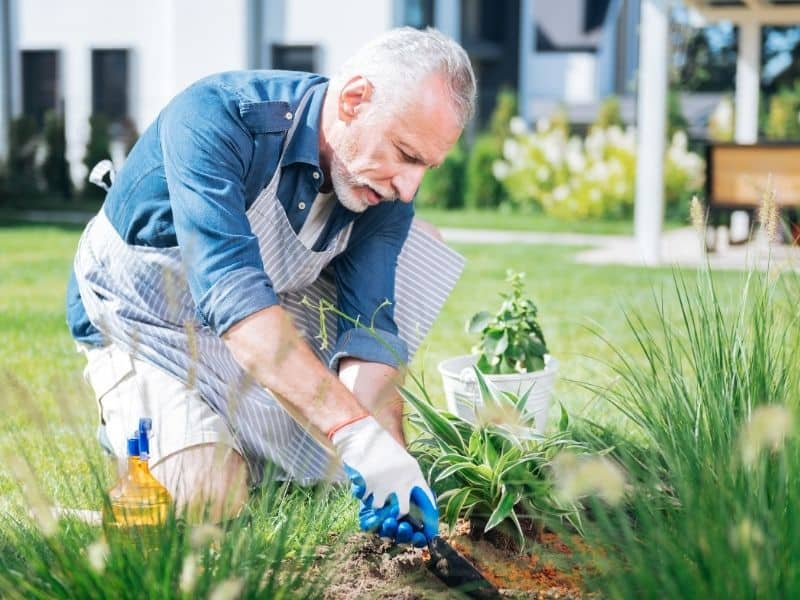 image of person in garden