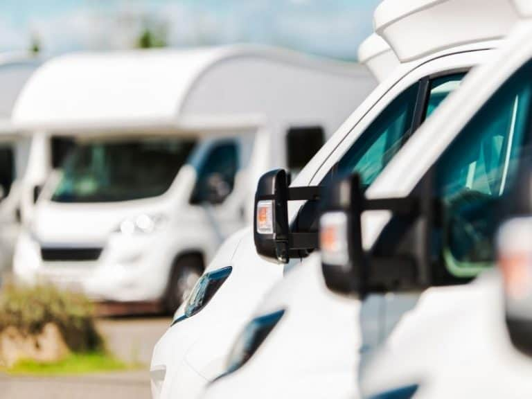 How to Clean Camper After Mice Infestation Without Getting Sick