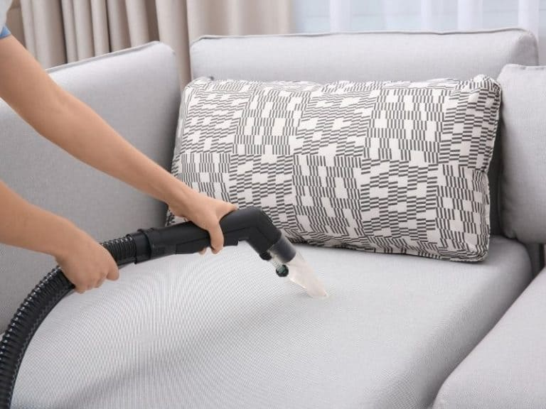 Caution: Bed Bugs Can Crawl Out of Vacuums Unless…