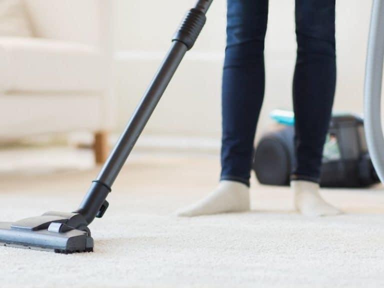 Vacuuming to Kill Fleas? Learn Proper Techniques